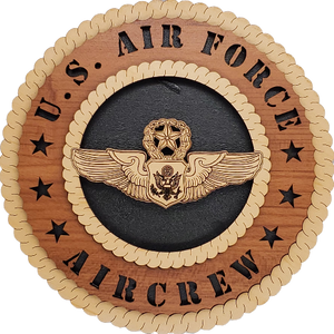 U.S. AIR FORCE MASTER OFFICER AIRCREW