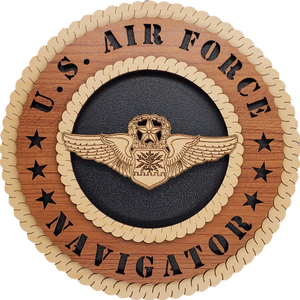 U.S. AIR FORCE NAVIGATOR L9