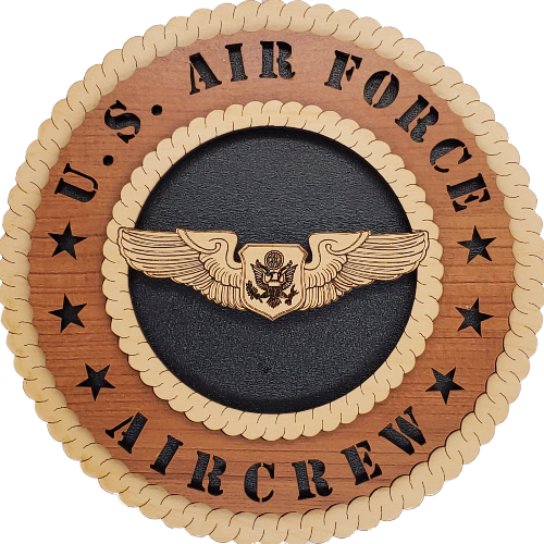 U.S. AIR FORCE OFFICER AIRCREW