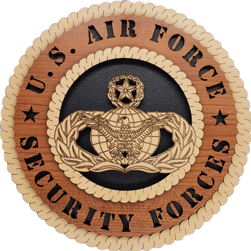 U.S. AIR FORCE SECURITY FORCES L9