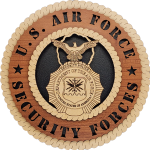 U.S. AIR FORCE SECURITY FORCES