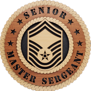 U.S. AIR FORCE SENIOR MASTER SERGEANT