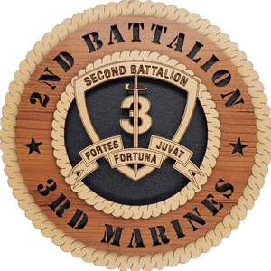 U.S. MARINES 2ND BATTALION 3RD MARINES
