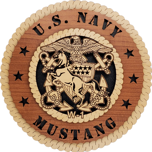 U.S. NAVY WARRANT OFFICER 1