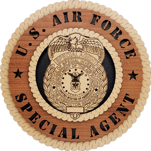 U.S. AIR FORCE OSI SPECIAL AGENT