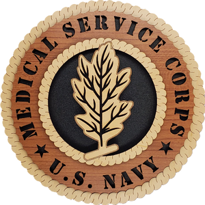 US NAVY MEDICAL SERVICE CORPS