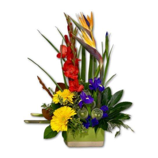 Bold & Beautiful Colourful Flower Arrangement - Shalimar Flower Shop