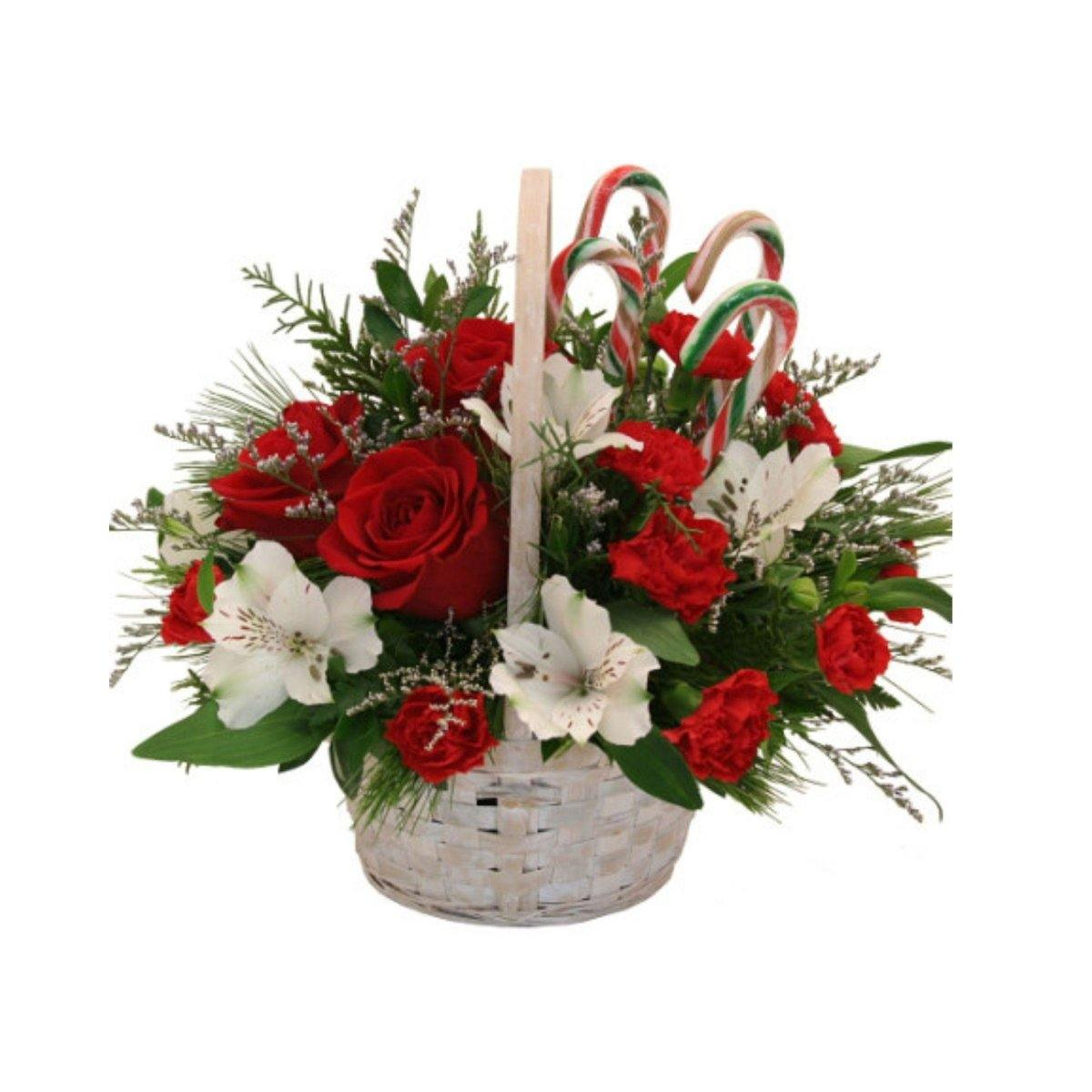 Candy Cane Christmas 19 - Shalimar Flower Shop