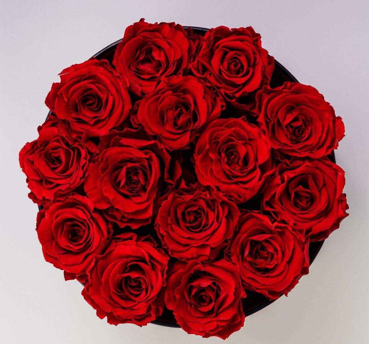 Designer's Choice Valentine's Day Special - Shalimar Flower Shop