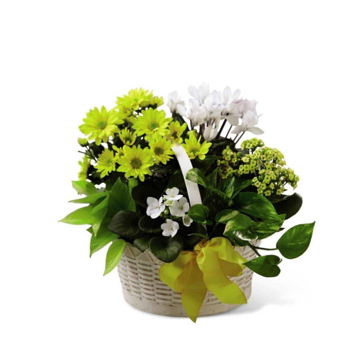 The FTD® A Bit of Sunshine Basket - Shalimar Flower Shop