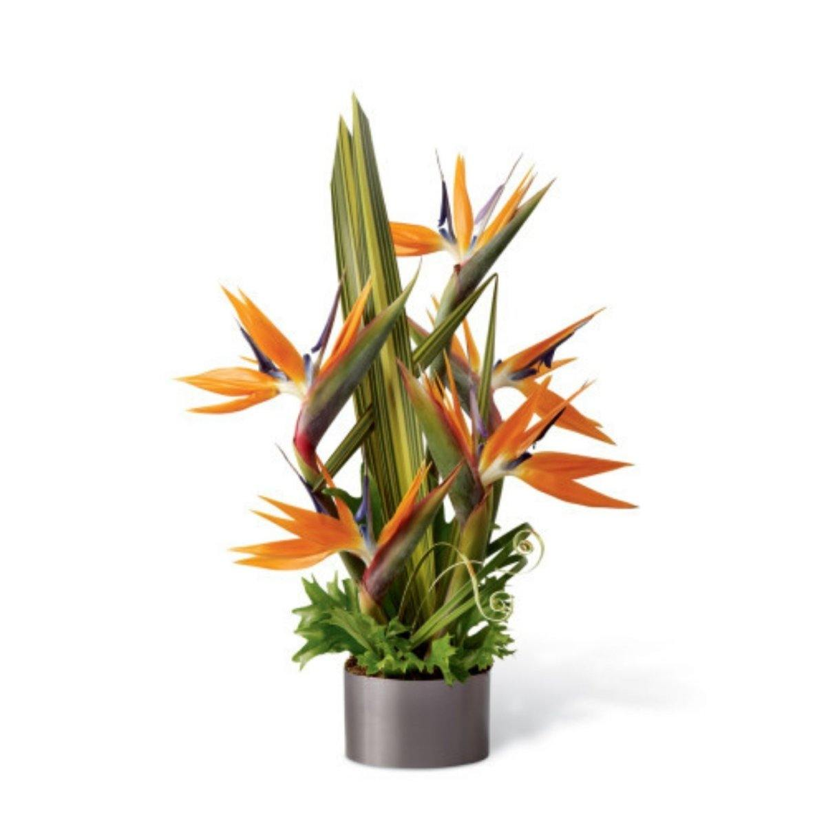The FTD® Tropical Bright Arrangement - Shalimar Flower Shop