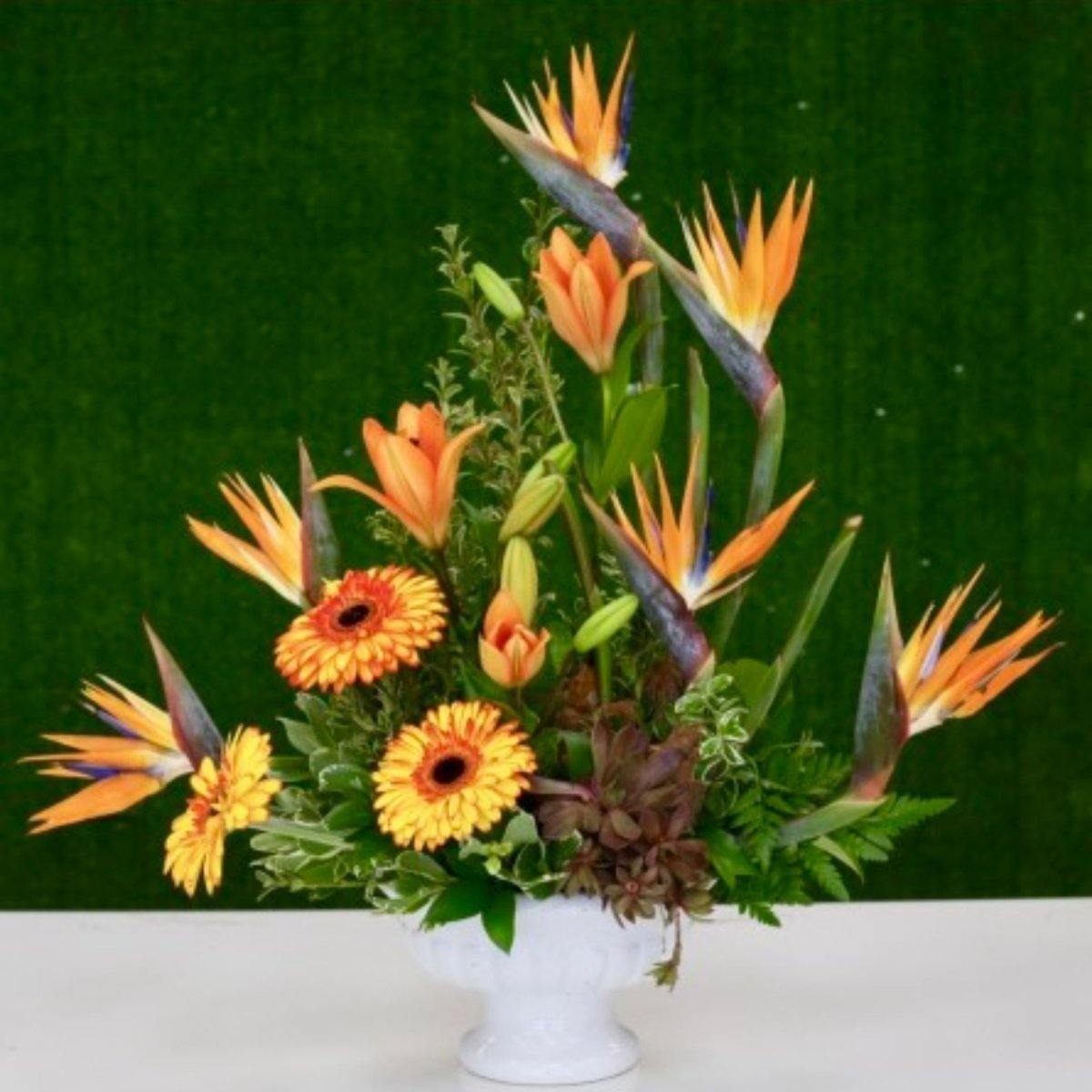 Tropical Bird of Paradise Floral Arrangement - Shalimar Flower Shop