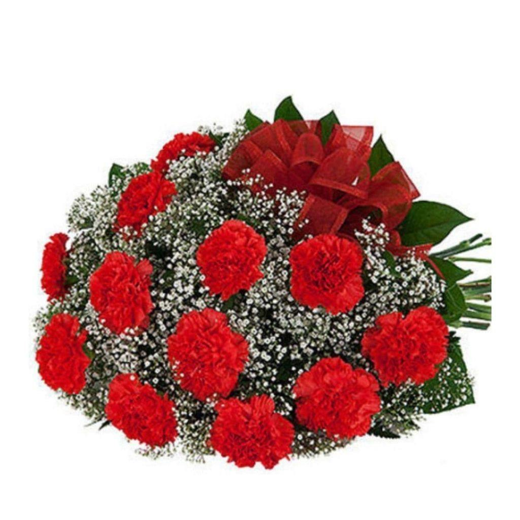 Twelve Red Carnations 2019 - Shalimar Flower Shop