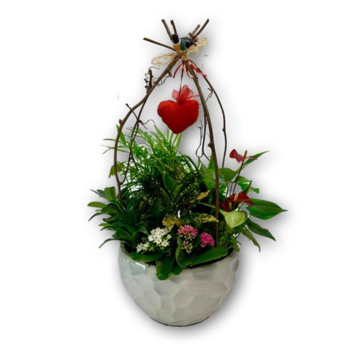'You Have my Heart' Planter - Shalimar Flower Shop