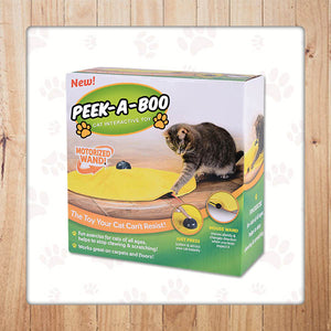 Peek-A-Boo Cat Interactive Toy