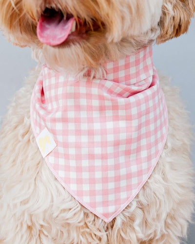 Sevenberry Gingham Pink Dog Bandana