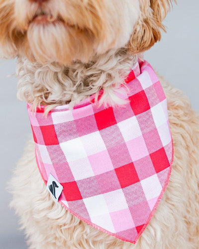 Valentine Buffalo Plaid Dog Bandana