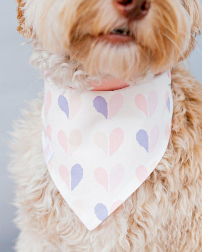 Happily Ever After Dog Bandana