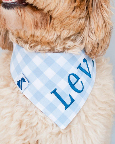 Sky Blue Gingham Dog Bandana