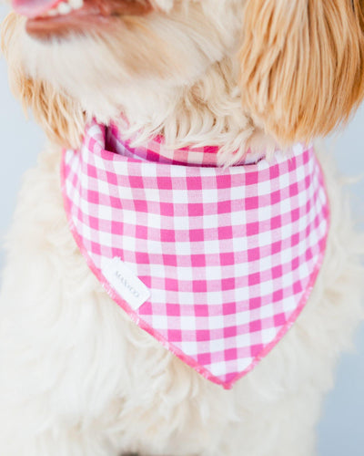 Raspberry Gingham Dog Bandana