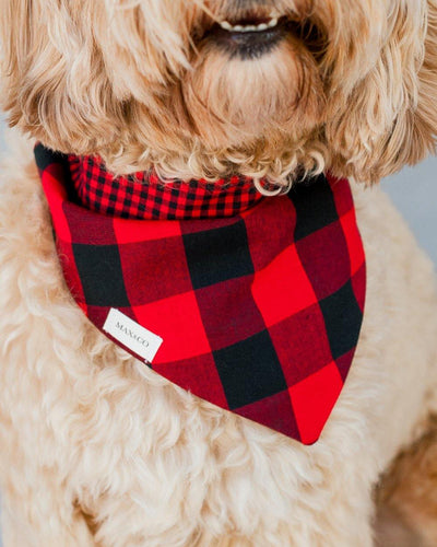 Carolina Gingham Scarlet Dog Bandana