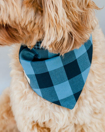 Carolina Gingham Blue Dog Bandana