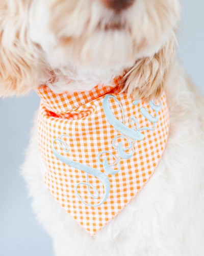 Orange Gingham Dog Bandana
