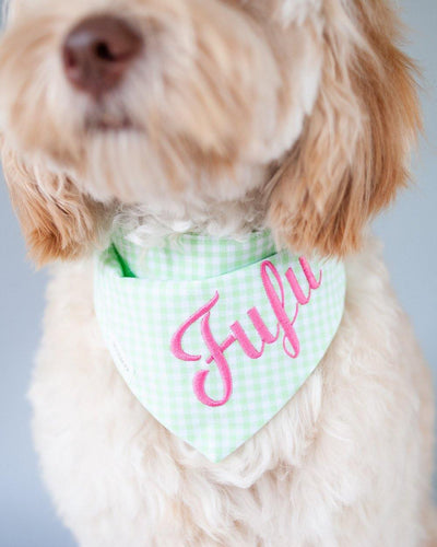 Mint Gingham Dog Bandana