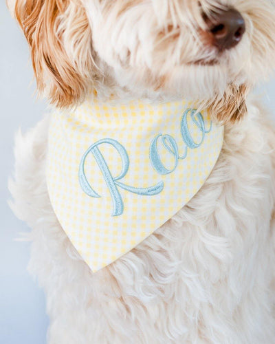 Yellow Gingham Dog Bandana