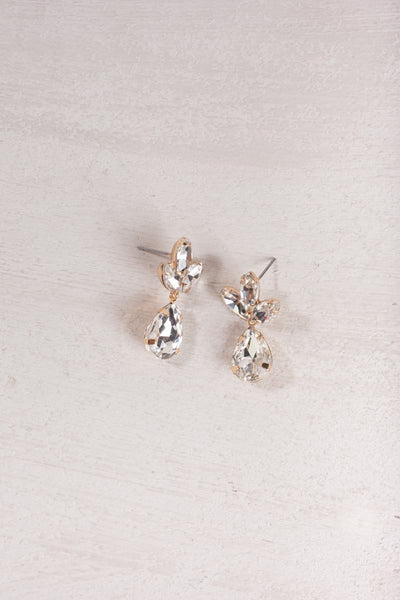 Maisie Crystal Teardrop Earrings Earrings Ana Crystal