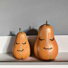 Load image into Gallery viewer, Mini Pumpkin - Styled By Sally