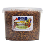 Natural World Dried Mealworms