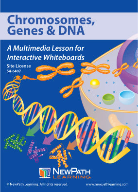 Chromosomes, Genes & DNA Multimedia Lesson (CD-ROM) W54-6207-W54-6407