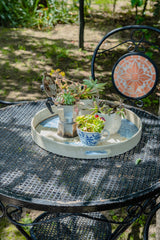 table with upcycled cups with plants growing