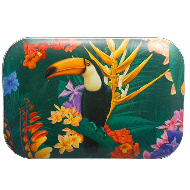 Bamboo Toucan Reusable Lunch Box - Rainbow Life