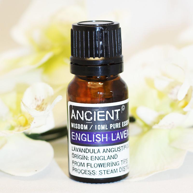 English Lavender Essential Oil - Rainbow Life