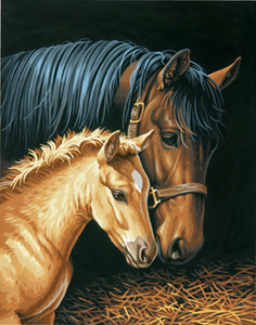"Gentle Touch Mare w/Foal Paint by Number (11""x14"")"