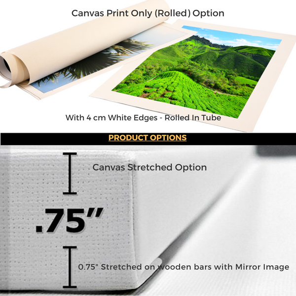 Product Options like Print Only Rolled or Stretched Canvas