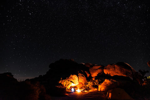 Joshua Tree National Park Stars