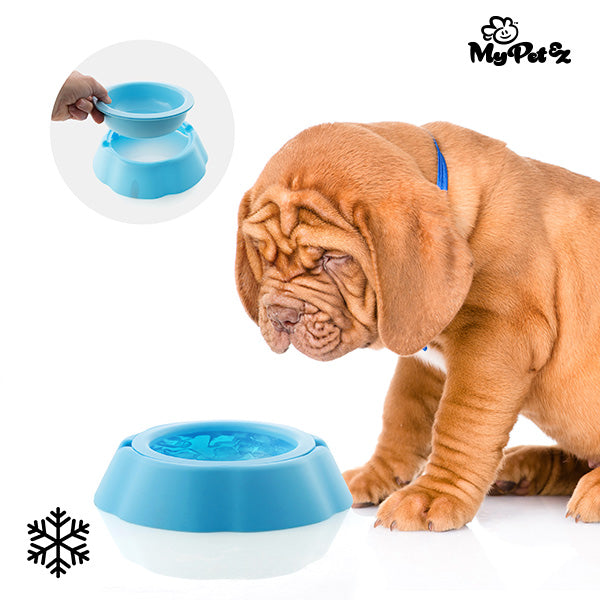 Water bowl for animals My Pet Frosty Bowl