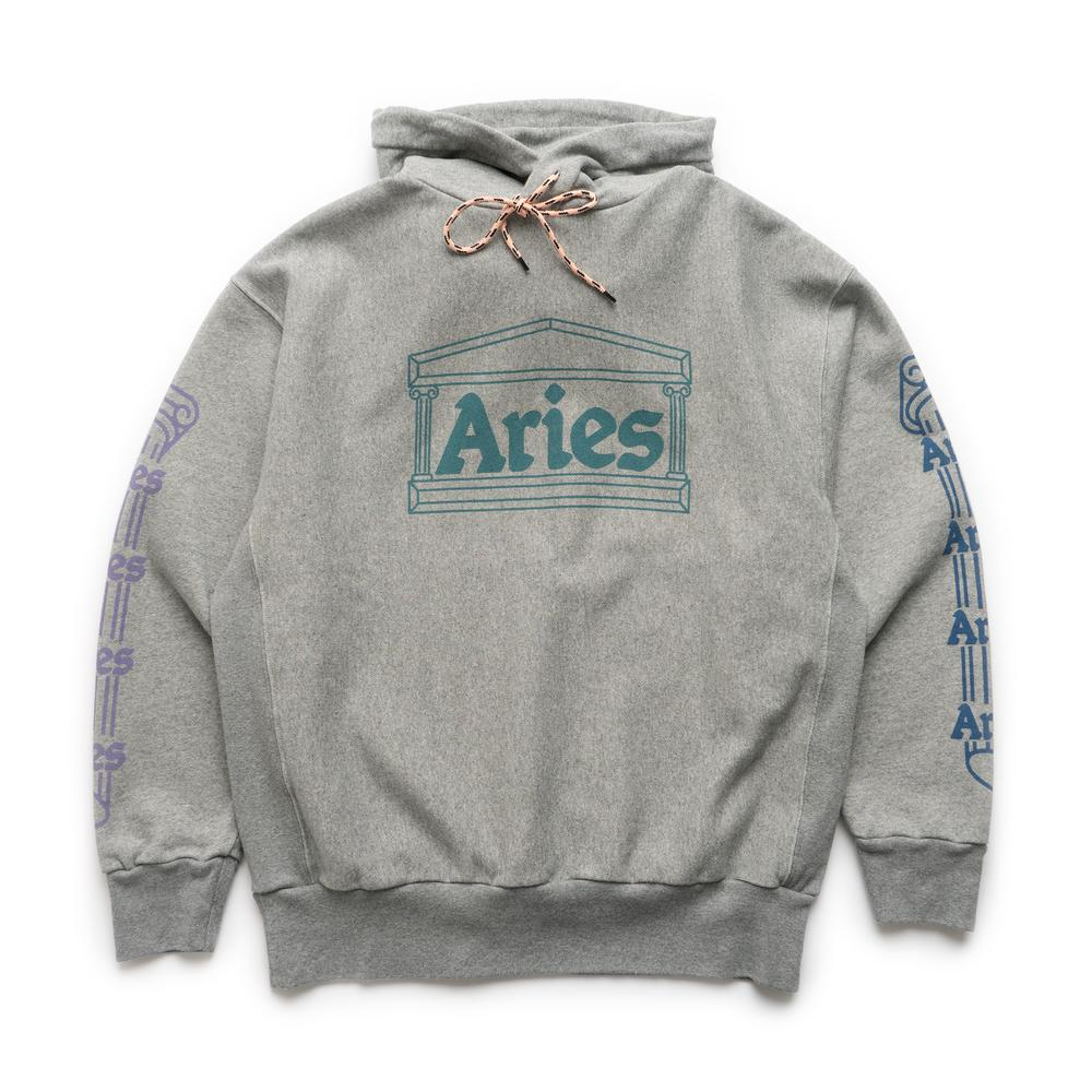 Load image into Gallery viewer, Temple Hoodie Grey
