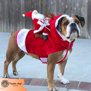 Christmas Santa Claus clothes for Dogs