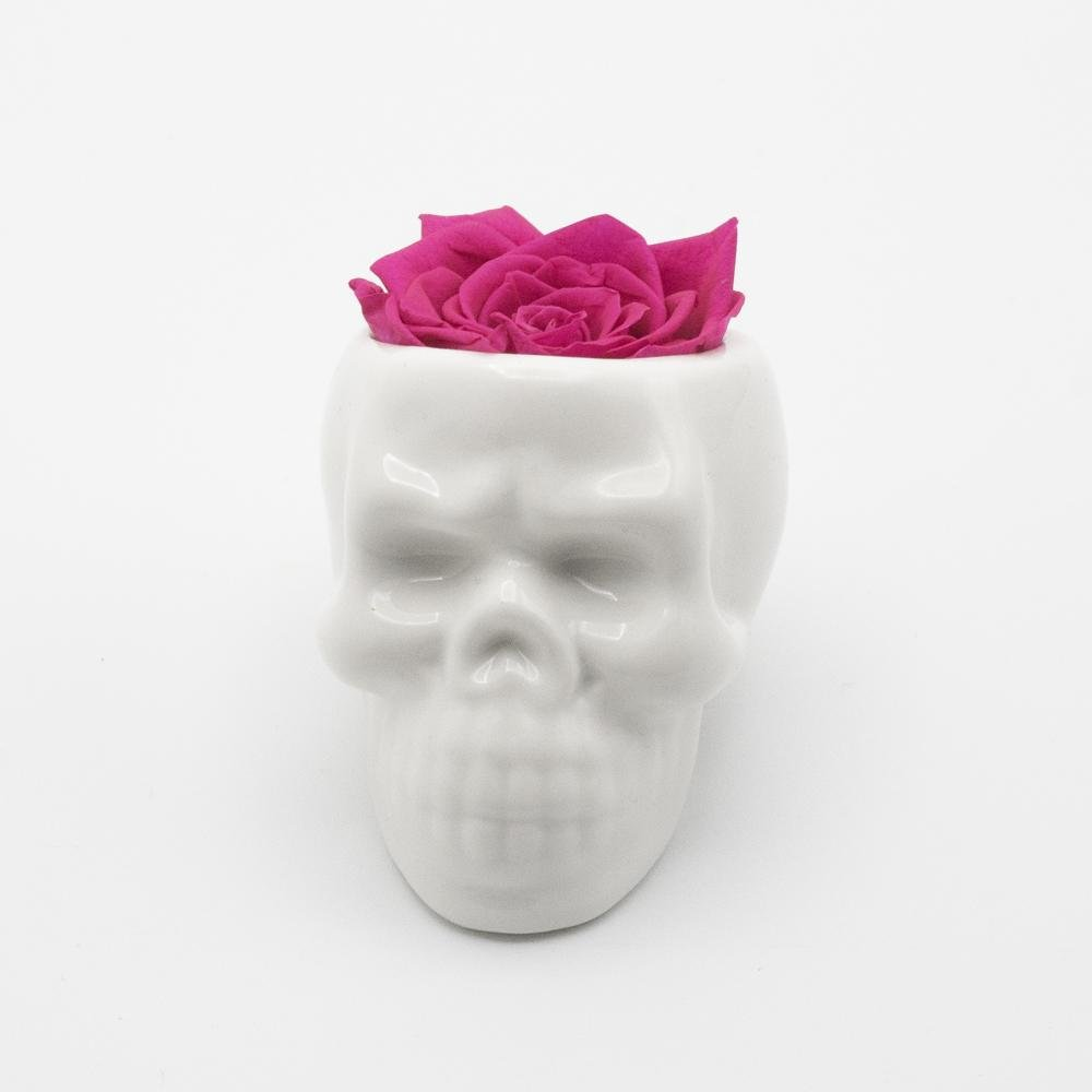 White Halloween Skull with Rose - Juliet's Roses