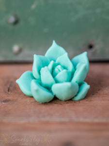 Large Succulent Wax Melt