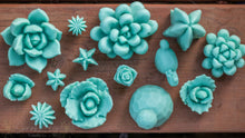 Load image into Gallery viewer, Large Rounded Succulent Wax Melt