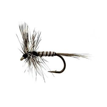 mosquito-fly-pattern-fly-fishing