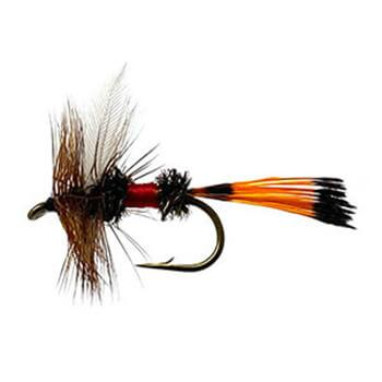what-is-fly-fishing