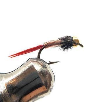 picture of a copper john fly