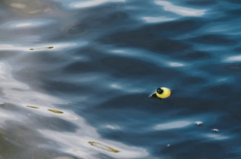 picture of a fly fishing bobber in the water