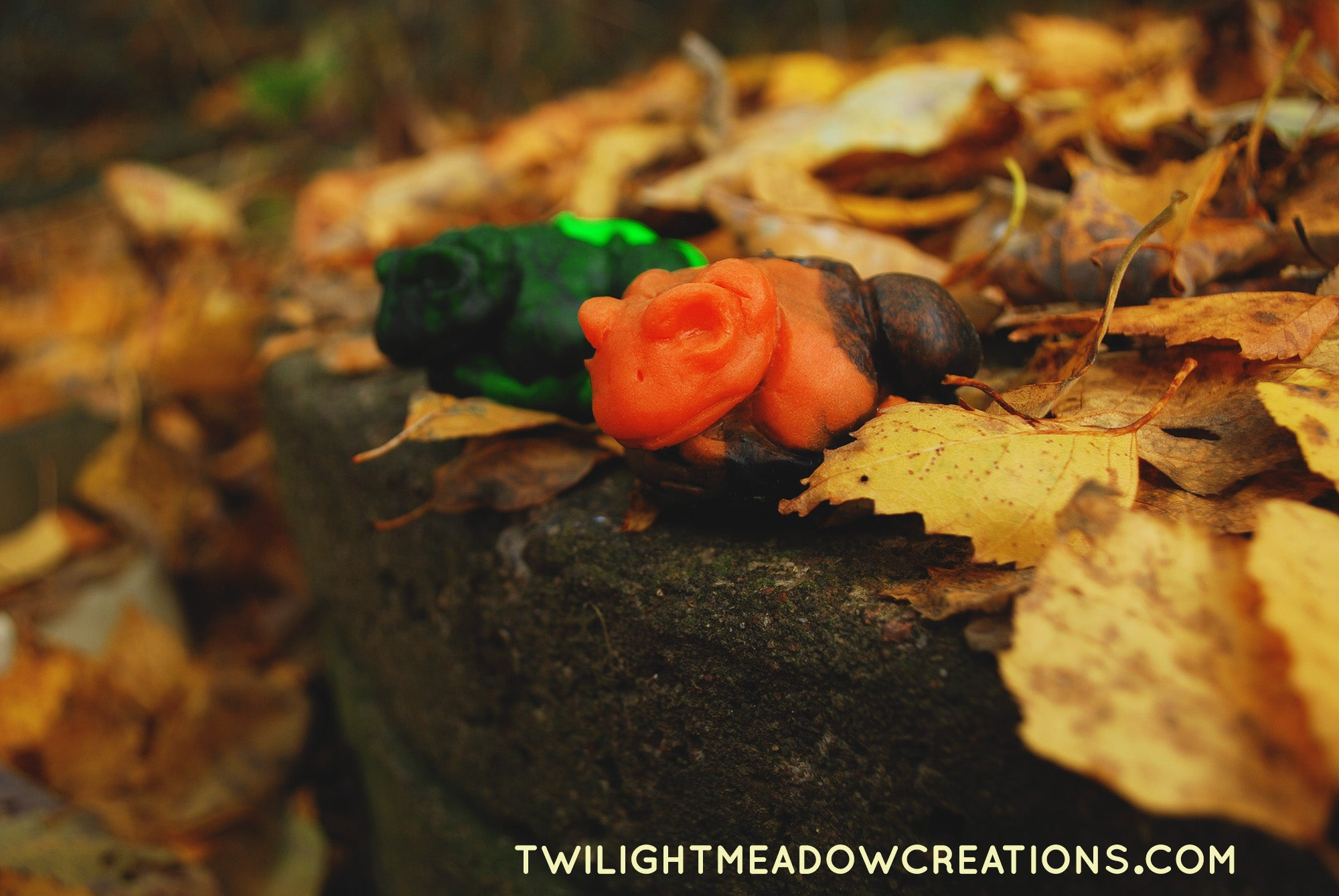 Skull Toad - Limited Halloween Squishie - Twilight Meadow Creations